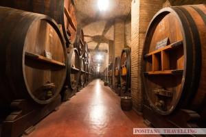 Large wooden casks in a wine cellar, Argentina